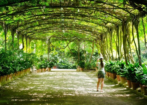 Things to do in Malaga - Visit the exotic gardens