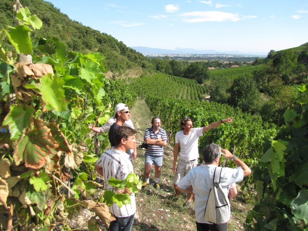 Top 5 Wine Tours for 2017